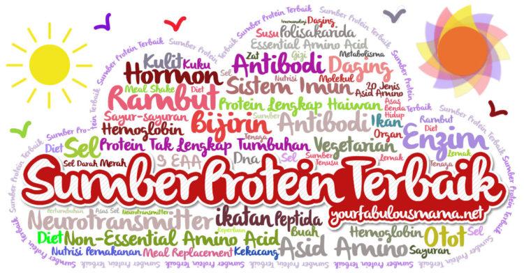 1001 Tentang Sumber Protein Terbaik