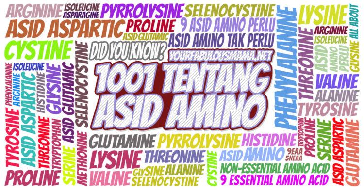 Fungsi Asid Amino: Sejarah, Takrifan, Jenis dan Fungsinya