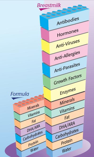 kelebihan susu ibu berbanding susu formula