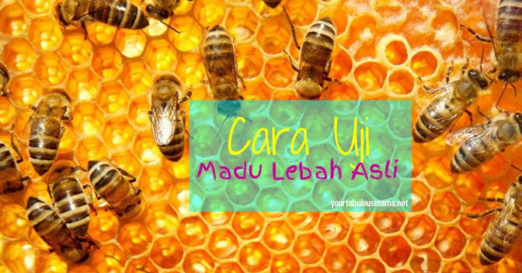 Cara Uji Madu Lebah Asli Paling Simple