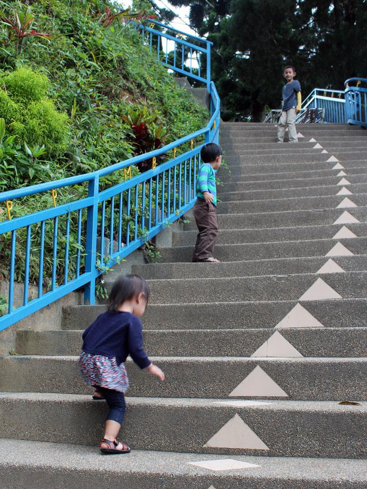 Kid-Ladder