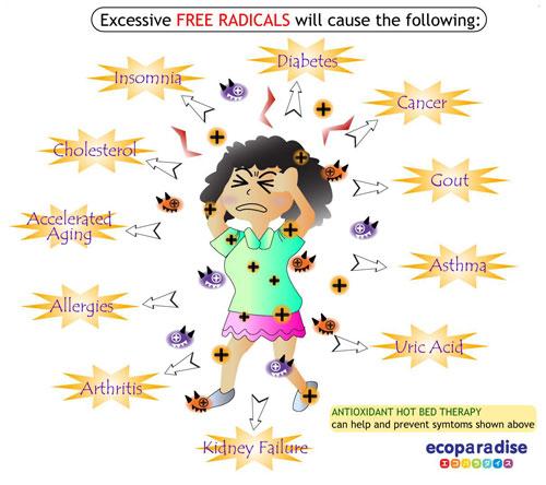 antioksidan melawan radikal bebas1
