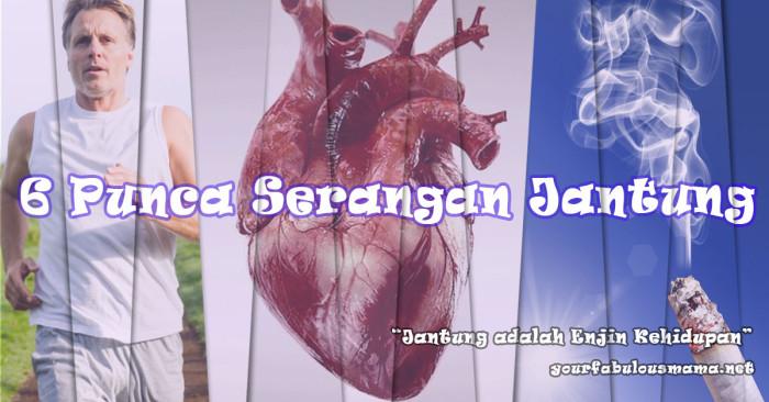 6 Punca Serangan Jantung