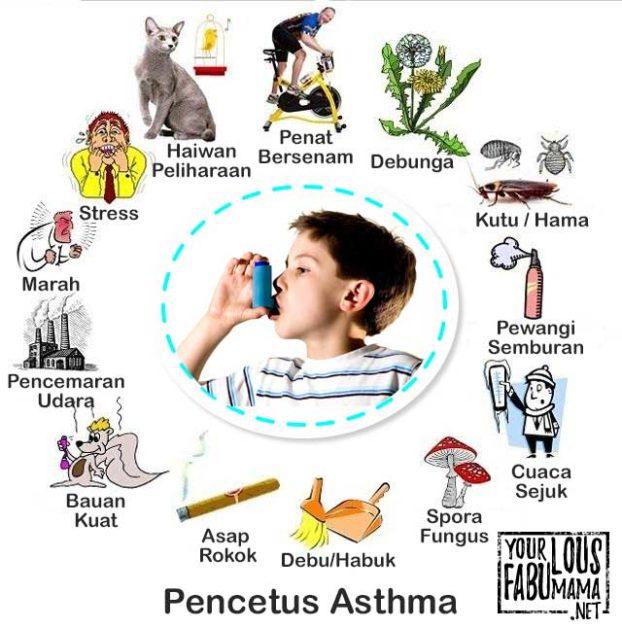 Punca Penyebab Asthma