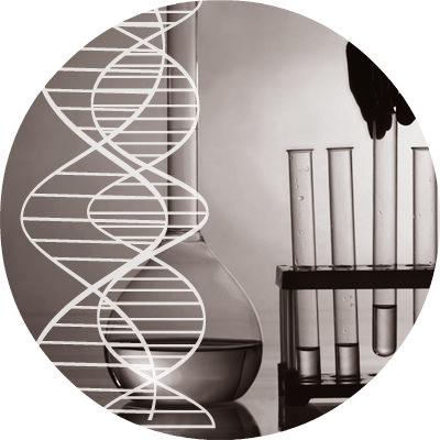 kerosakan DNA sel