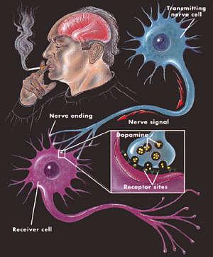 berhenti merokok nikotin