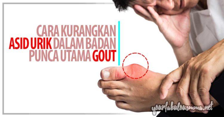Cara Kurangkan Asid Urik Dalam Badan Untuk Menghilangkan Masalah Gout