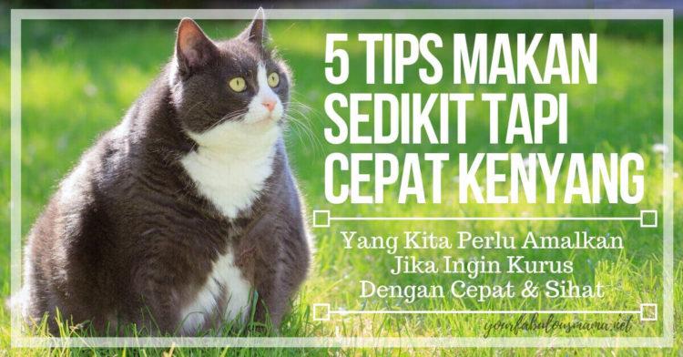 Tips Makan Sedikit