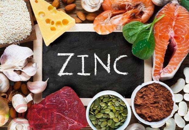 Makanan Tinggi Zinc