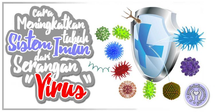 Tips Meningkatkan Sistem Imun Tubuh Dan Elak Jangkitan Virus