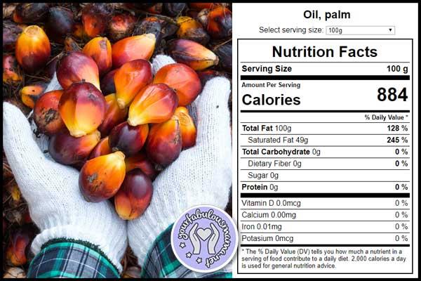 Fakta Nutrisi Minyak Kelapa Sawit